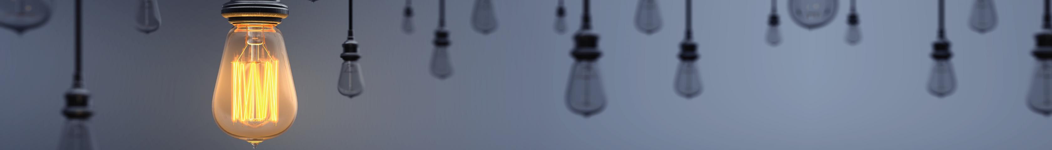 Light bulbs hanging with one illuminated